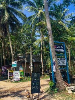 Achtung - Gefahr durch herabfallende Kokosnüsse