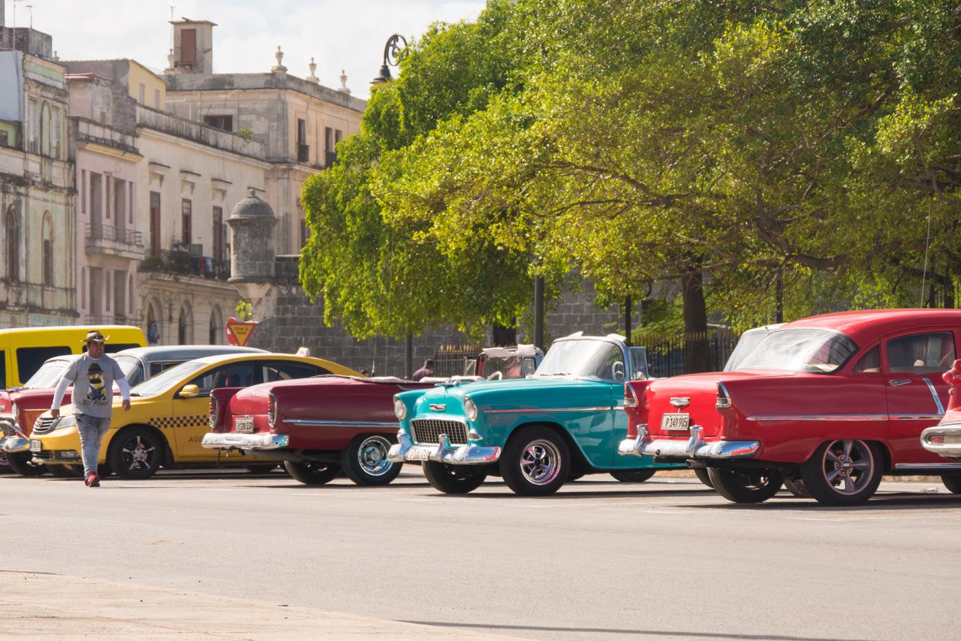 Frisch Polierte Oldtimer in Havanna