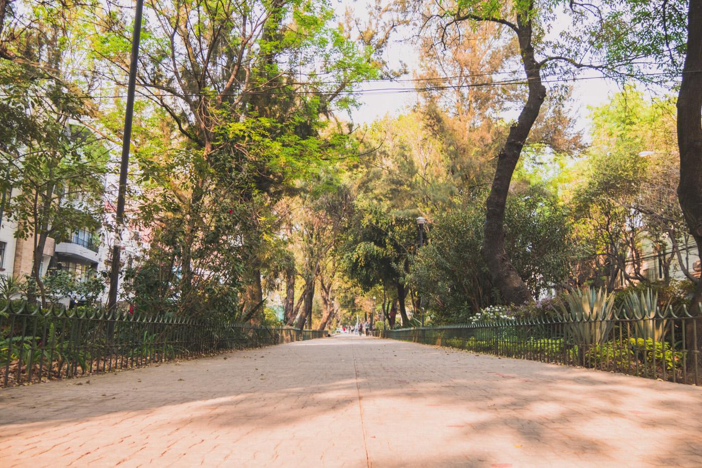 Avenida Amsterdam in La Condesa in Mexiko-Stadt