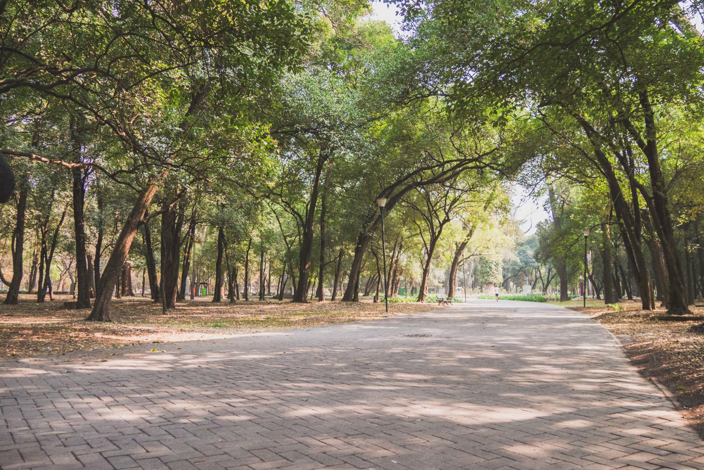Weg des Chapuletepec Park's in Mexiko-Stadt