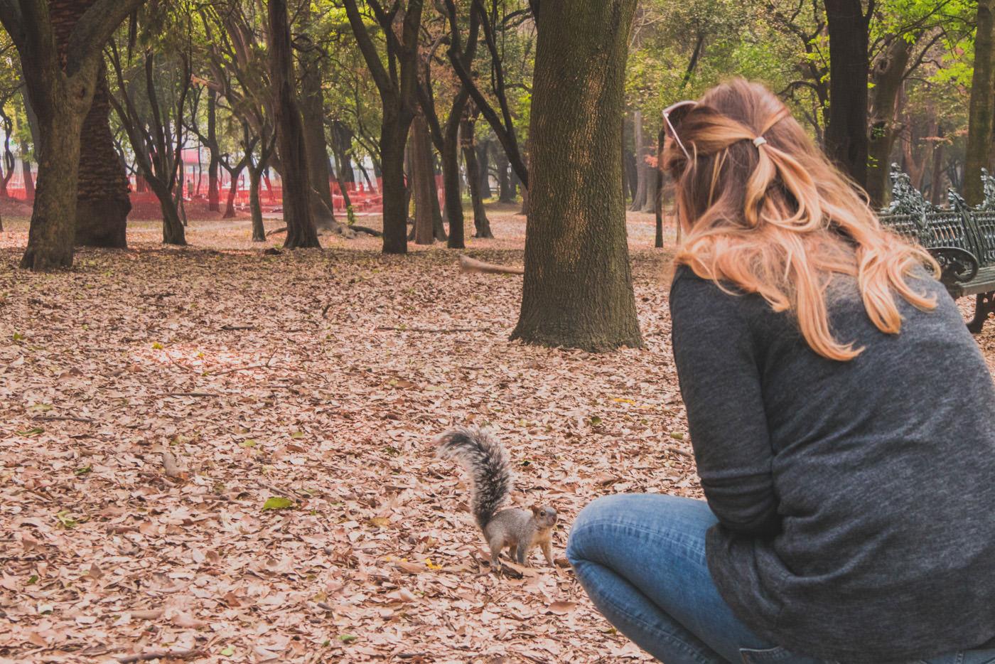 Julia mit Eichhörnchen im Chapultepec Park in Mexiko-Stadt