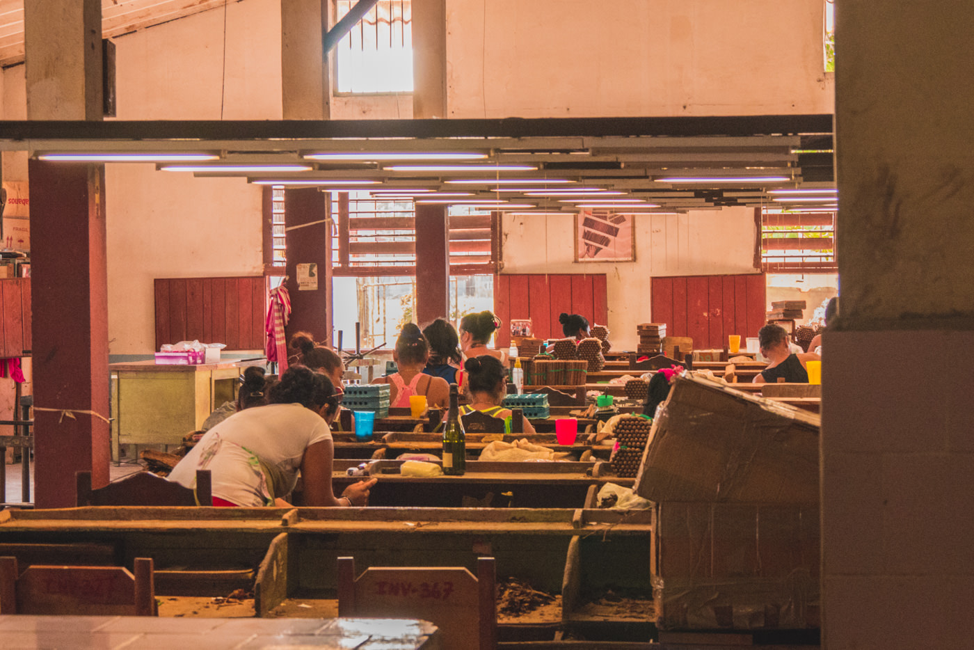 Einblick in eine Zigarrenfabrik in Trinidad