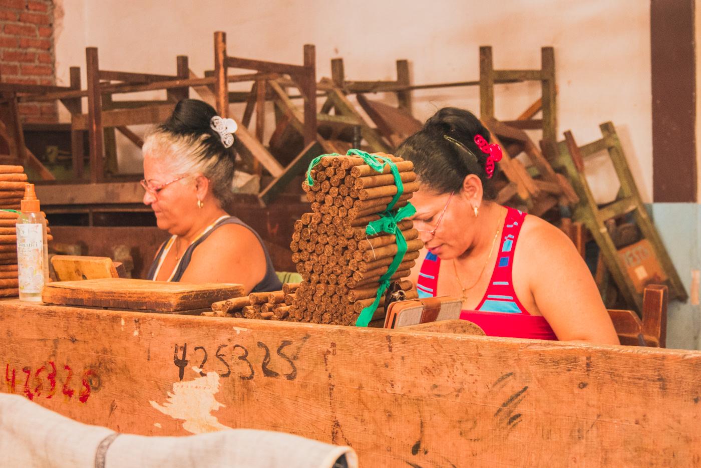 Frauen in der Tabakfabrik rollen Zigarren