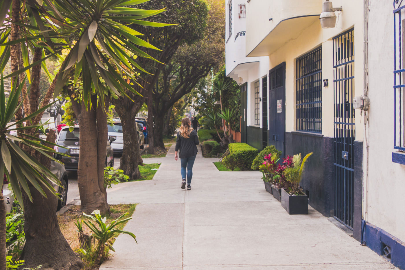 Straße von La Roma in Mexiko-Stadt