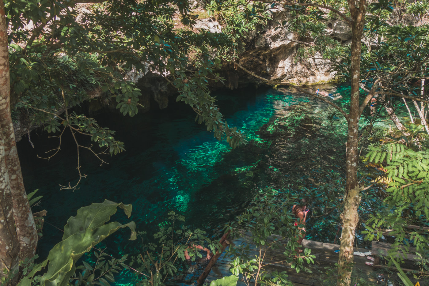 Grand Cenote bei Tulum in Mexiko