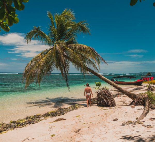 Bastimentos & Cayo Zapatilla – Bocas del Toro's Highlights!