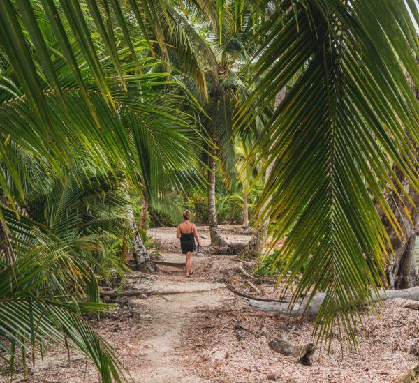 Bocas del Toro & die Isla Colon – Inselparadies Panamas?
