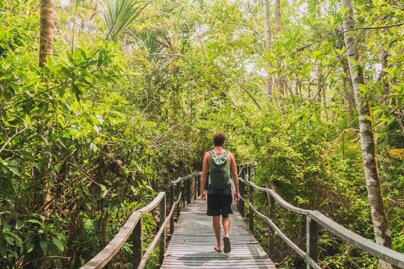 Matthias im Cahuita Nationalpark