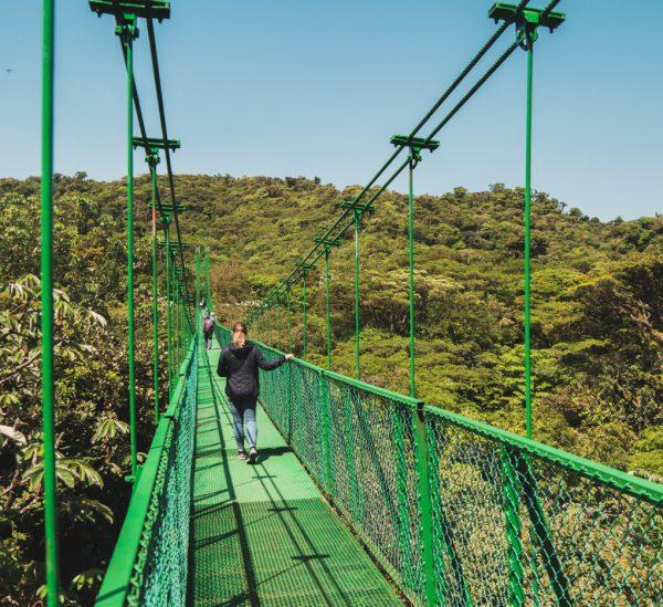 Monteverde – Nebelwald erleben in Costa Rica