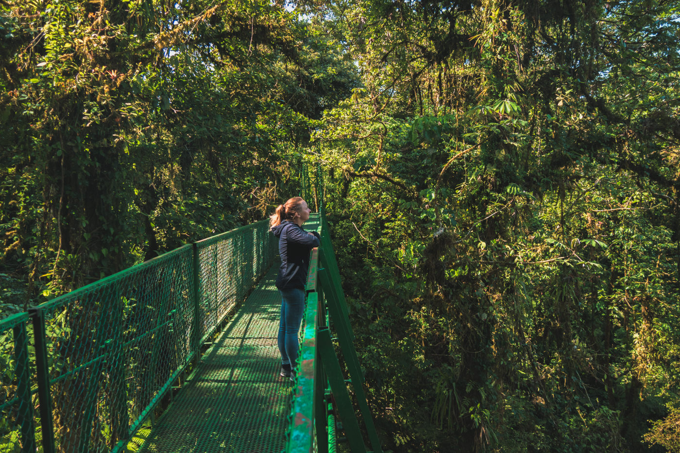 Julia auf der Hängebrücke im Monteverde Nationalpark