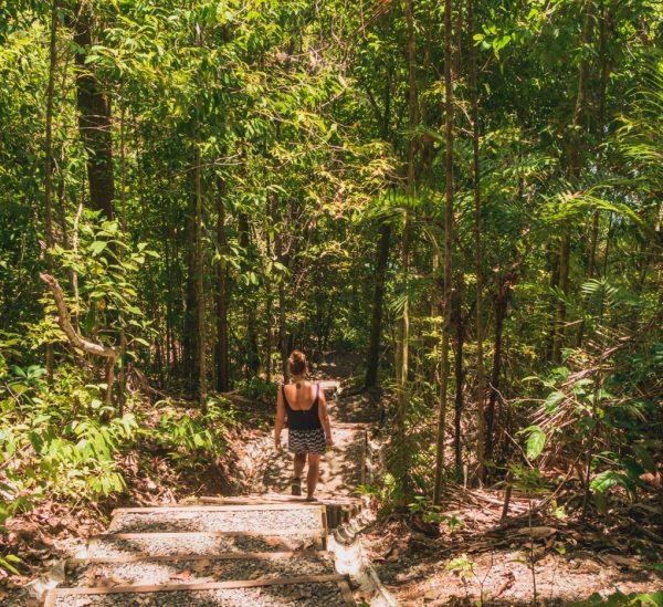Manuel Antonio vs. Cahuita Nationalpark