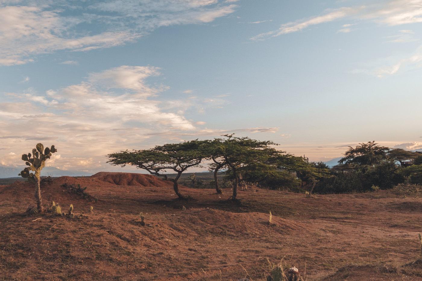 Die Landschaft der Tatacoa Wüste in Kolumbien