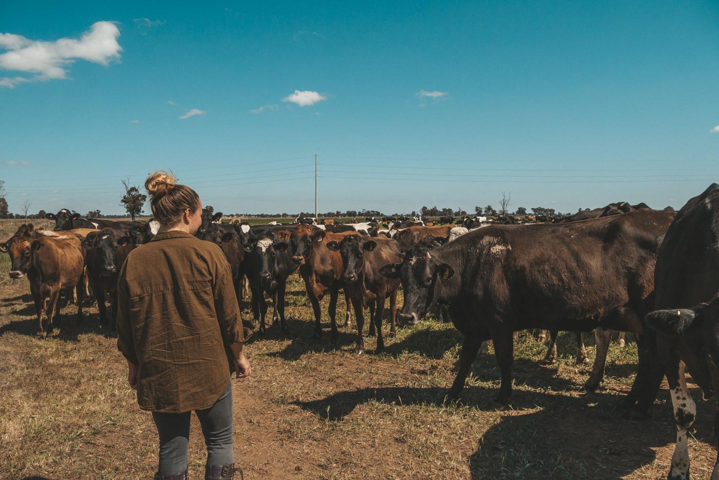 Julia auf der Weide mit den Kühen