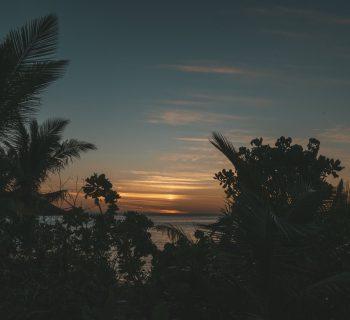 Fidschis – Abtauchen ins Paradies