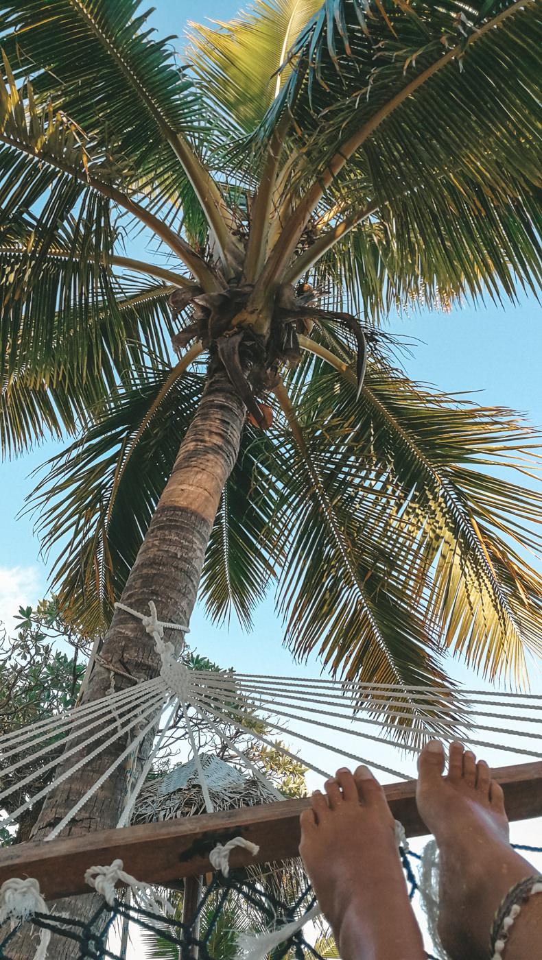 Hängematte unter Palmen auf South Sea Island