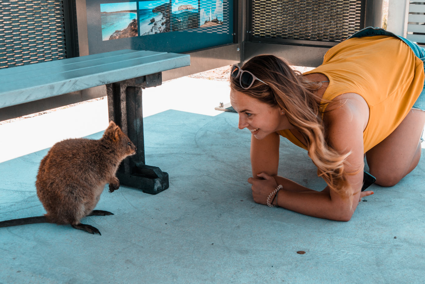 Julia mit einem Quokka auf Rottnest Island