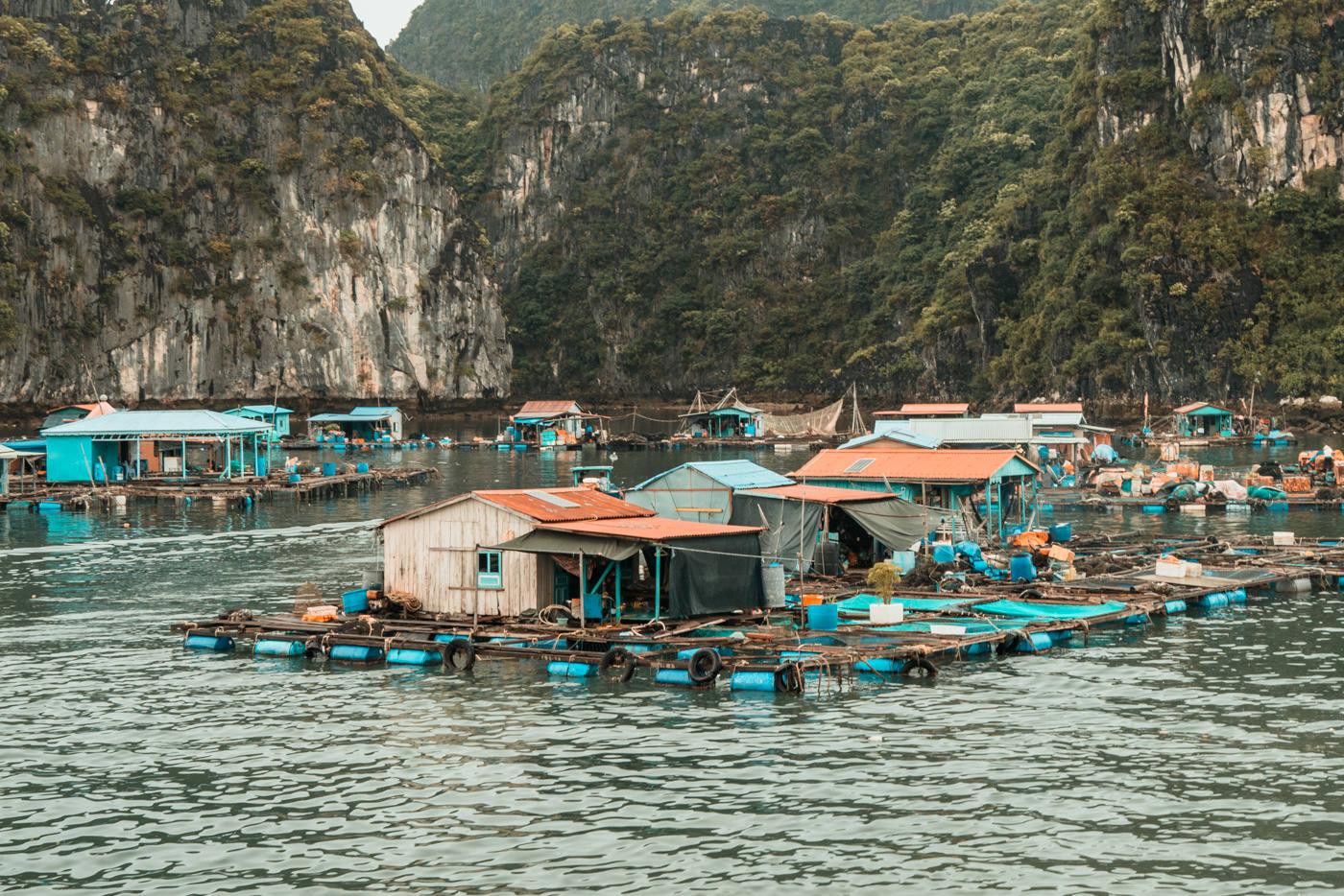Fisch Farm in der Halong Bucht, Vietnam