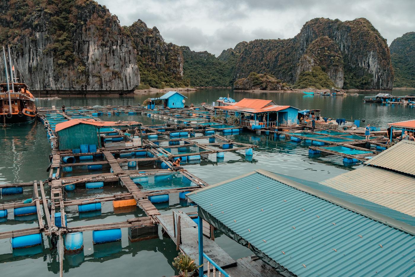 Fischfarm in der Halong Bucht in Vietnam
