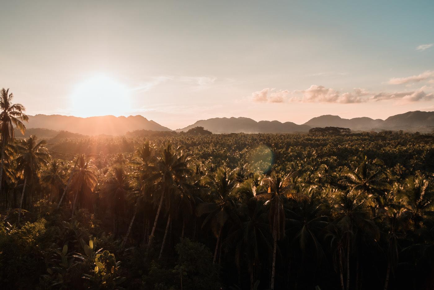 Insel der Palmen, Siargao, Philippinen