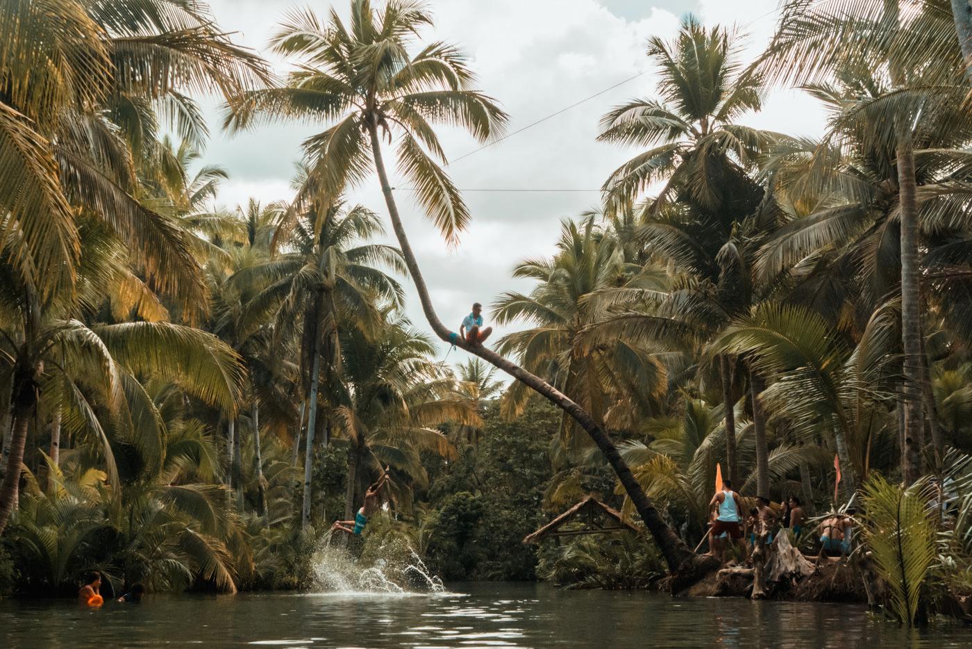 Matthias schwingt an einer Palme in den Fluss auf Siargao