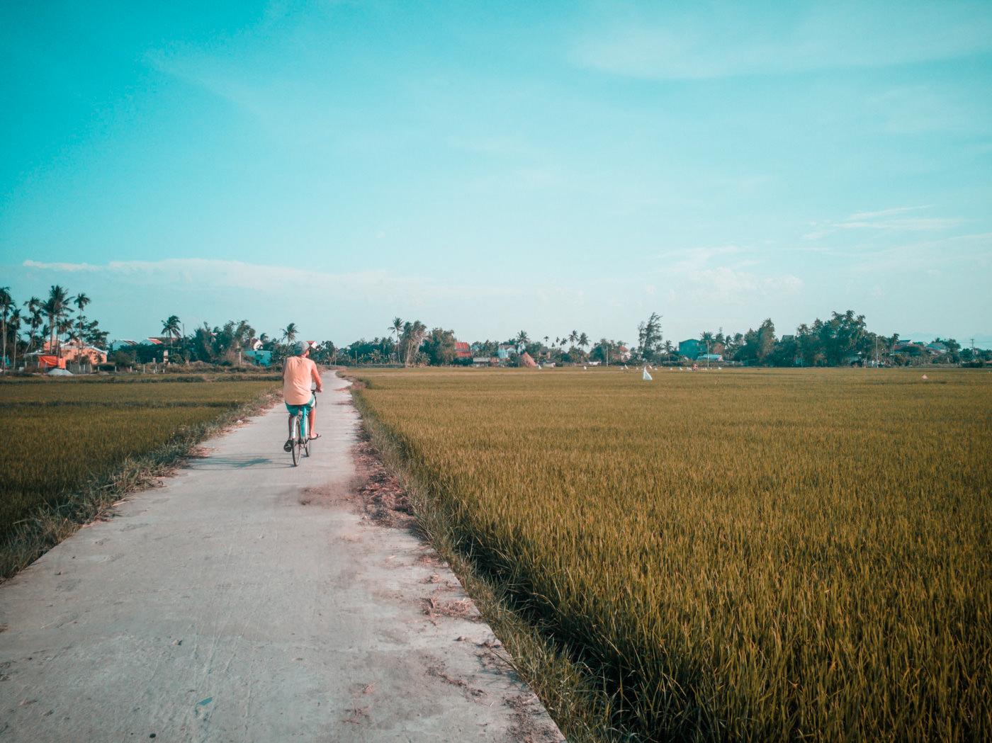Matthias mit dem Rad in den Reisfeldern bei Hoi An