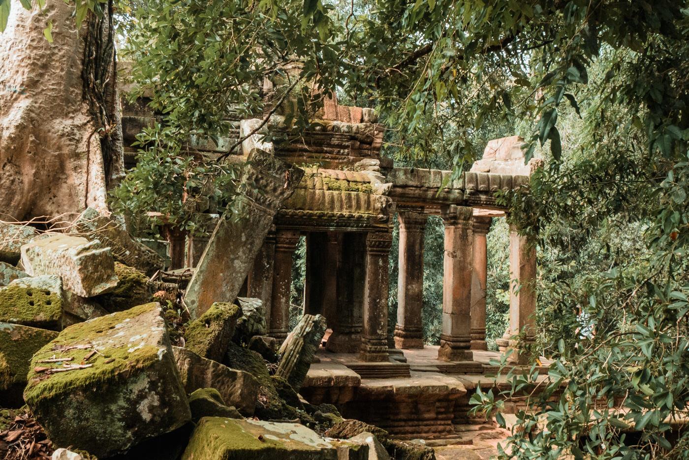 Ta Prohm Tempel, Angkor Wat, Kambodscha